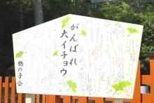 $Hisanori Oizumi