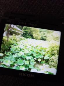 NORI 杉田友也-110817_172407.jpg