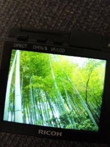 NORI 杉田友也-110817_172752.jpg